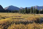 Kings Peak, Utah Summit from Henry's Fork Basin meadow by Roger J. Wendell - 09-23-2011