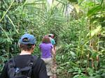 Hiking through the Rainforest - Ecuador, January 2006