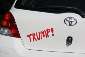 Trump Bumper Sticker - 2019
