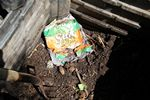 Sun Chip bag compost experiment follow-up - 07-21-2013